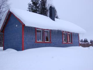 Nice Cabin with Internet Access and Parking - Krokom vacation rentals