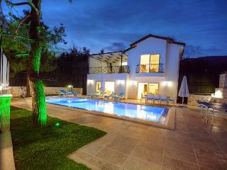 Villa Zara - Islamlar vacation rentals