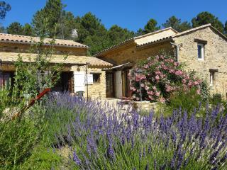 Mas Provençal à 10 mn  des Gorges de L'Ardèche ... - Saint-Julien-de-Peyrolas vacation rentals