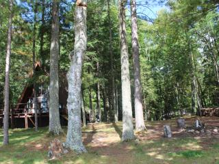 Wolf's Landing-Watersmeet Lake-Eagle River Chain - Eagle River vacation rentals