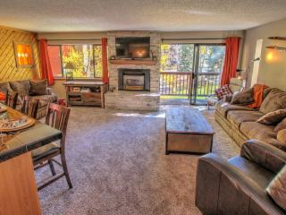 Ski-in and 1 Block from Downtown Breckenridge! - Breckenridge vacation rentals