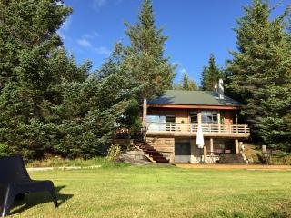 Luxury Holiday Lakehouse Villa - Selfoss vacation rentals