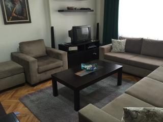 2+1 flat at the centre of Istanbul - Istanbul vacation rentals