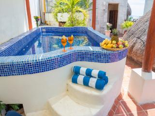 LUXURY PENTHOUSE, PRIVATE POOL! - Playa del Carmen vacation rentals