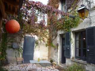 GÎTE avec JARDIN au coeur des châteaux de la Loire - Blere vacation rentals