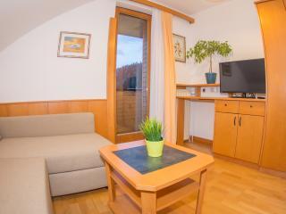 App Helena***- app.no.3; fell the nature-mountain view;family friendly - Kranjska Gora vacation rentals