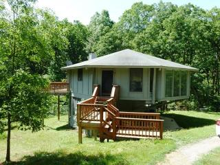 Tree Top Lodge - Bentonville vacation rentals