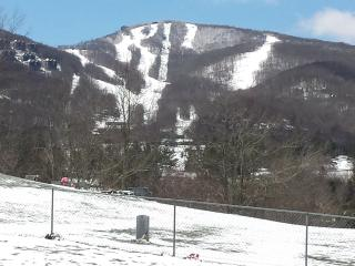 Luxury Apartment in walking dist. to the slopes - Banner Elk vacation rentals