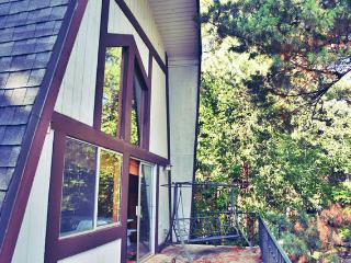 Lake Gregory Cabin + Romantic Loft - Crestline vacation rentals