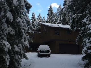 Luxury Loft - Your Private Forest Retreat Awaits! - Whitefish vacation rentals
