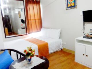 Condo Unit Fully Furnished for rent in Pasig - Pasig vacation rentals