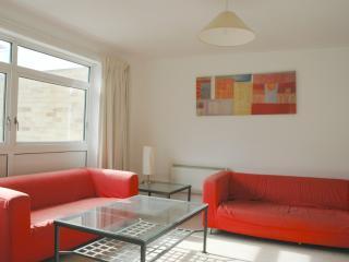 2 bed flat close to london - Croydon vacation rentals