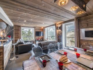 Beautiful Condo with Internet Access and Television - Courchevel vacation rentals