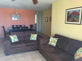 Cozy 3 bedroom Apartment in Arecibo - Arecibo vacation rentals