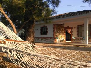 Casa La Barraca de Aguas Vivas - Alzira vacation rentals