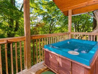 Deerly Beloved - Sevierville vacation rentals