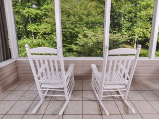 Hen Wallow Creek Cottage - Cosby vacation rentals