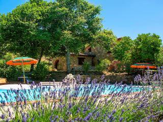TUSCANY VILLA PRINCIPE 8 prsns - Castiglion Fiorentino vacation rentals