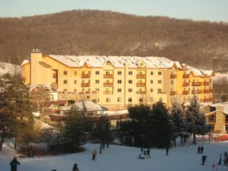 Tamarack Club 3rd Floor - Ellicottville vacation rentals