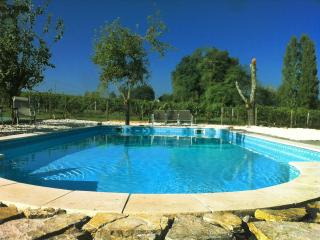 Blaye - Farmhouse on vineyard, with private pool - Saint-Ciers-De-Canesse vacation rentals