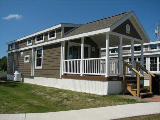 Nice Cottage with Internet Access and A/C - Alexandria Bay vacation rentals