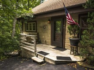 The Tree House Location: Between Boone & Blowing Rock - Boone vacation rentals