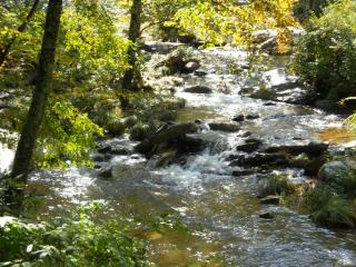 A River Runs Through It Location: Boone / Valle Crucis - Boone vacation rentals