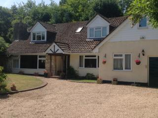 Large 5 bedroom Family house in stunning Hampshire - Liphook vacation rentals