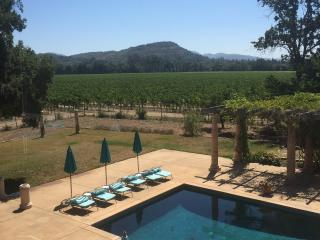 In The Vines - Napa vacation rentals