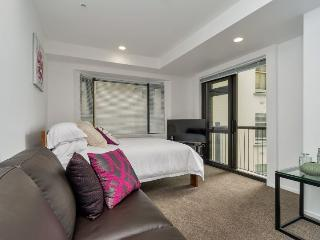Large studio apartment in central Auckland with views of the CBD - Auckland vacation rentals