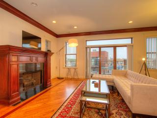 3BR Penthouse w/ Rooftop Deck - Chicago vacation rentals