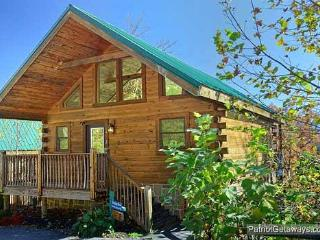PRECIOUS VIEW - Gatlinburg vacation rentals