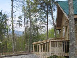 Romantic 1 bedroom Pigeon Forge Cabin with Fireplace - Pigeon Forge vacation rentals