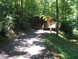 Perfect 1 bedroom Cabin in Pigeon Forge - Pigeon Forge vacation rentals