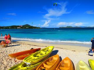 Right On the Beach -Luxury Duplex Condo #Free WiFi - Saint Thomas vacation rentals