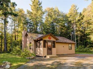 Maple Drive-23 - Wardsboro vacation rentals