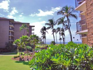 95+/Night 1BD/1BA Oceanfront Hawaiian R & R - Kihei vacation rentals