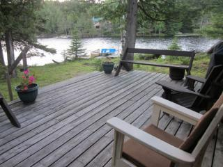 Jacks Lake Cottage, Apsley, ON--Boat Access Only - Apsley vacation rentals