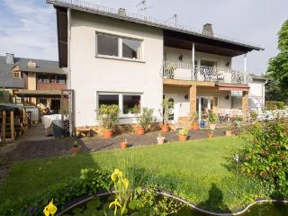 Cozy 3 bedroom Apartment in Dieblich - Dieblich vacation rentals