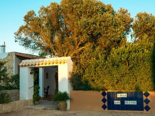 APARTAMENTOS LOS OLIVOS (4 pax) - Formentera vacation rentals