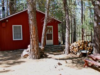 Rustic Cabin-