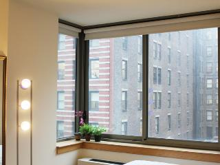 Amazing 2 BDR close to ESB ,  High rise with view. - New York City vacation rentals