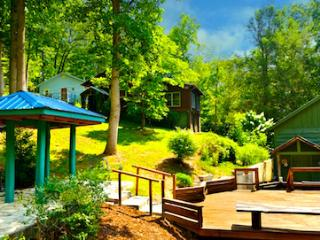 "ENTIRE HOUSE Sleeps 7 in ""BLUE CABIN HOME 3"" - Asheville vacation rentals"
