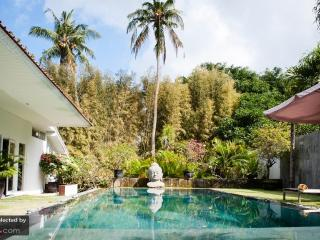 Perfect 2 bedroom Villa in Canggu with Internet Access - Canggu vacation rentals