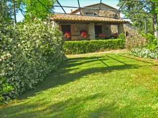 Nice 1 bedroom Farmhouse Barn in Campagnatico - Campagnatico vacation rentals