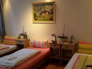 Apartment/Monteurwohnung/Ferienwohnung EG Bis 6 Personen - Cologne vacation rentals