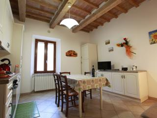 Nice Condo with Housekeeping Included and Television - Rosia vacation rentals