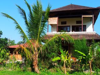 Family 2 bedroom Country Home near Ubud- WIFI, Pool, Kitchen, Marble Bathroom - Ubud vacation rentals
