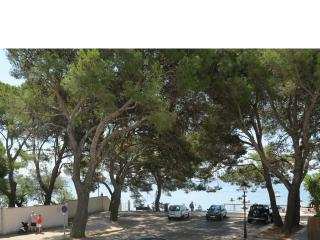 Pinewalk apartment EL FARO - Port de Pollenca vacation rentals