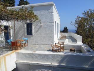 200y farmhouse in a natural garden, great sea view - Andros Town vacation rentals